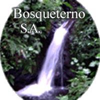 Bosqueterno SA