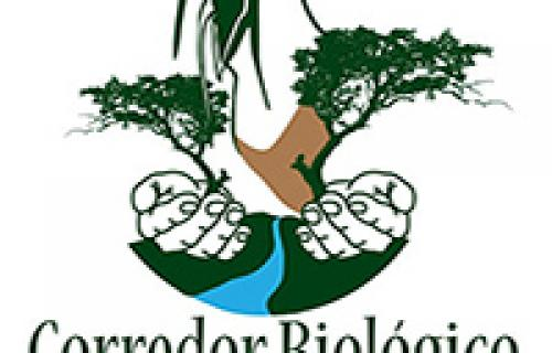 Bellbird Biological Corridor