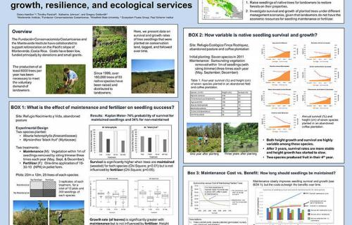 Tropical Forest Reforestation: Survivorship, growth, resilience, and ecological services.