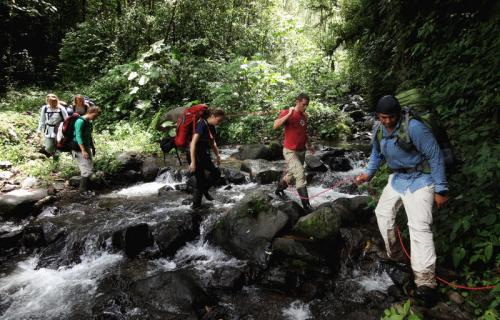University of California Education Abroad Program in Tropical Biology & Conservation